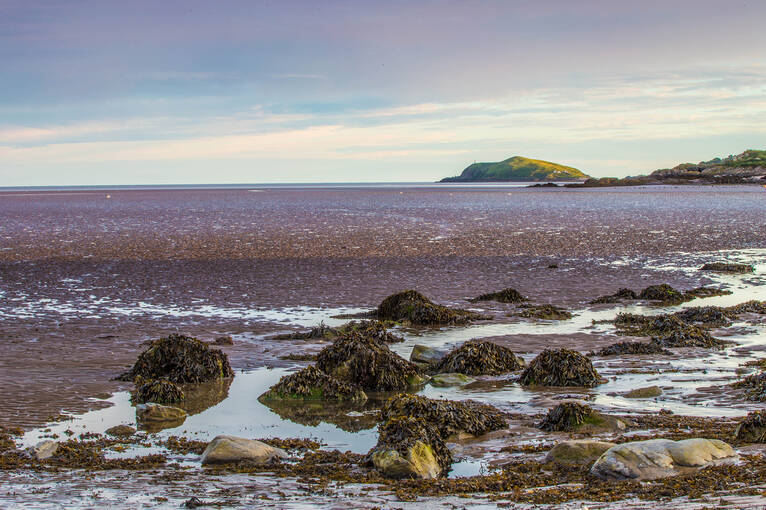 Low tide at Rockcliffe