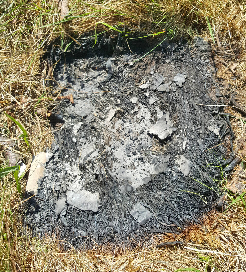 Scorched earth, from a disposable barbecue