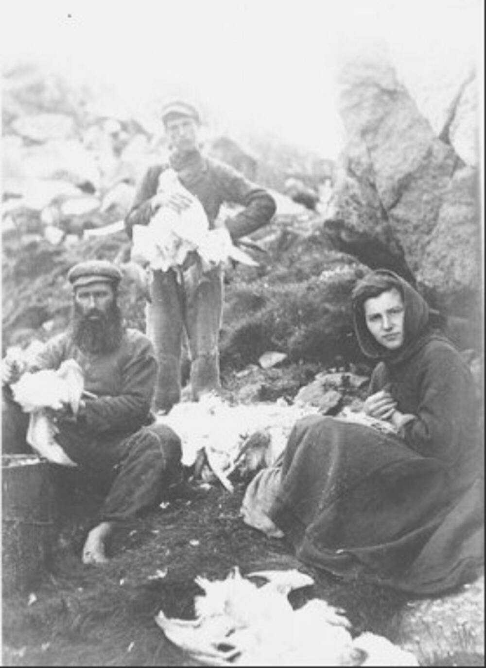 A black and white photo of three people, either holding or sitting beside hunted seabirds.