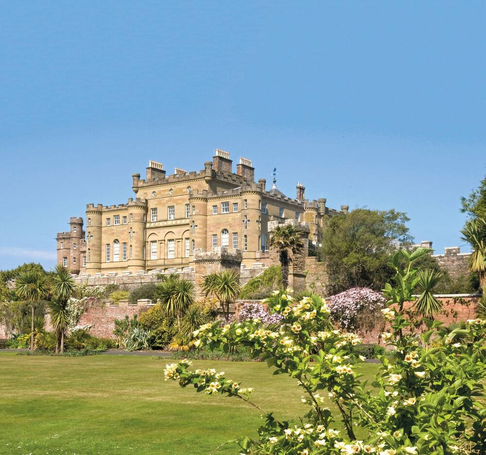 A view of Culzean Castle from the manicured lawns on a bright sunny day, with not a cloud in the sky. A sprig of white flowers peeks out in the foreground. Palm trees grow by the stone wall before the ground rises to the castle.