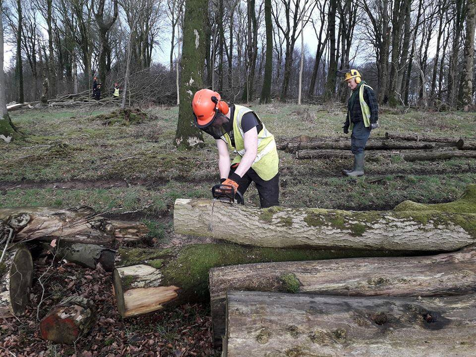 SRUC Barony students using chainsaws