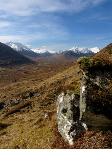 In the background snow capped mountains.  in the foreground moss covered rocks and brown bracken and heather.