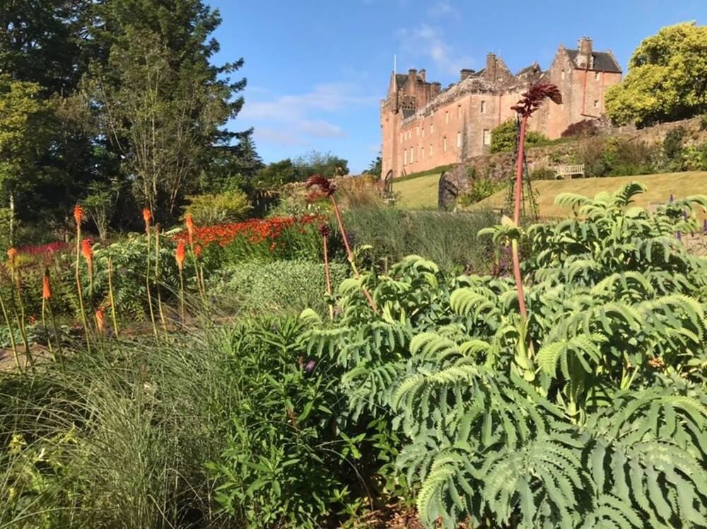 A flower border, with red hot pokers and the deeply cut leaves of Melianthus major. Brodick Castle is in the background under a blue sky.