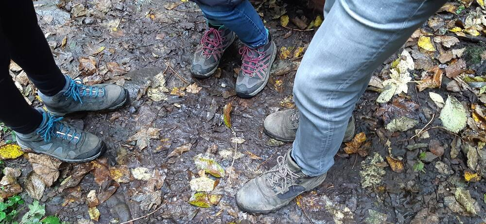 Looking down at three pairs of muddy walking boots. Fallen leaves are on the ground.