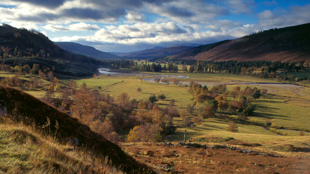A view of a wide glen at Mar Lodge Estate, with a river winding its way through the centre. The surrounding hills are clad in heather and pine plantations.
