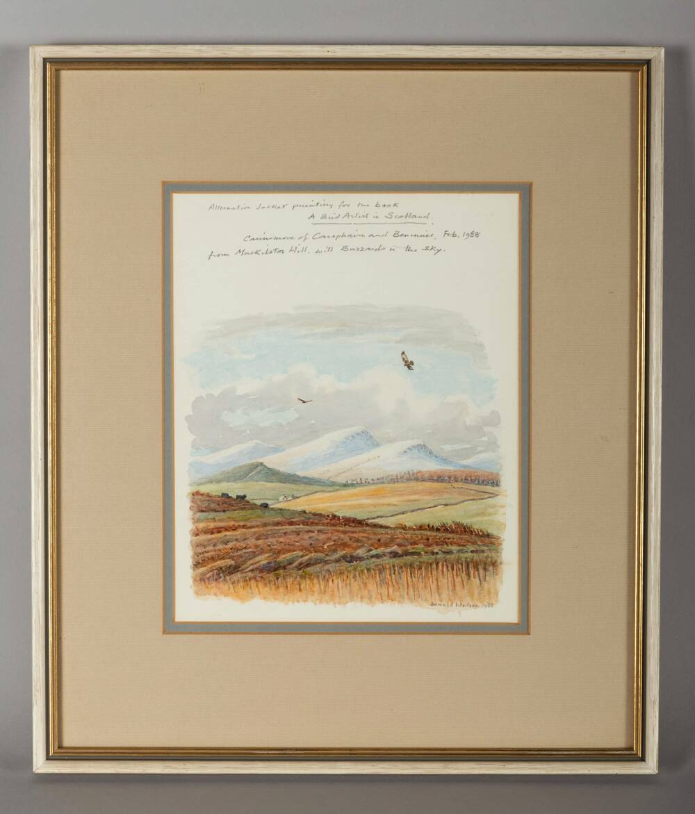 Watercolour of the Southern Uplands hill, Cairnsmore of Carsphairn from Mackilston Hill (1988)​